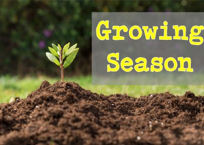 Growing Season – Trustworthiness | Aug 19 | Pastor Paul Cross